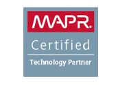 Dataguise MapR Customer