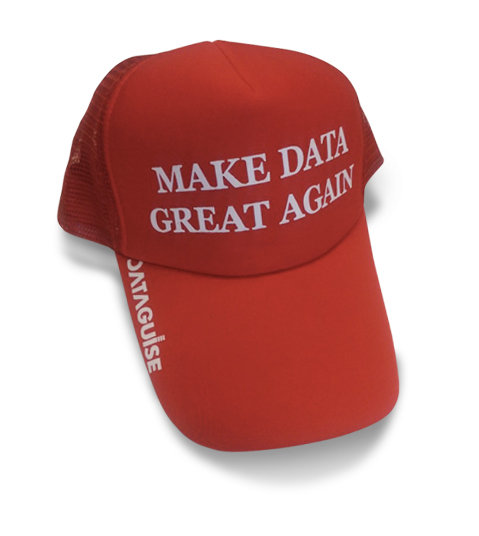 Make Data Great Again Hat