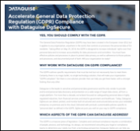 DgSecure Datasheet on General Data Protection Regulation (GDPR) compliance
