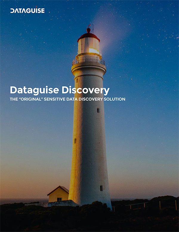 Dataguise Discovery